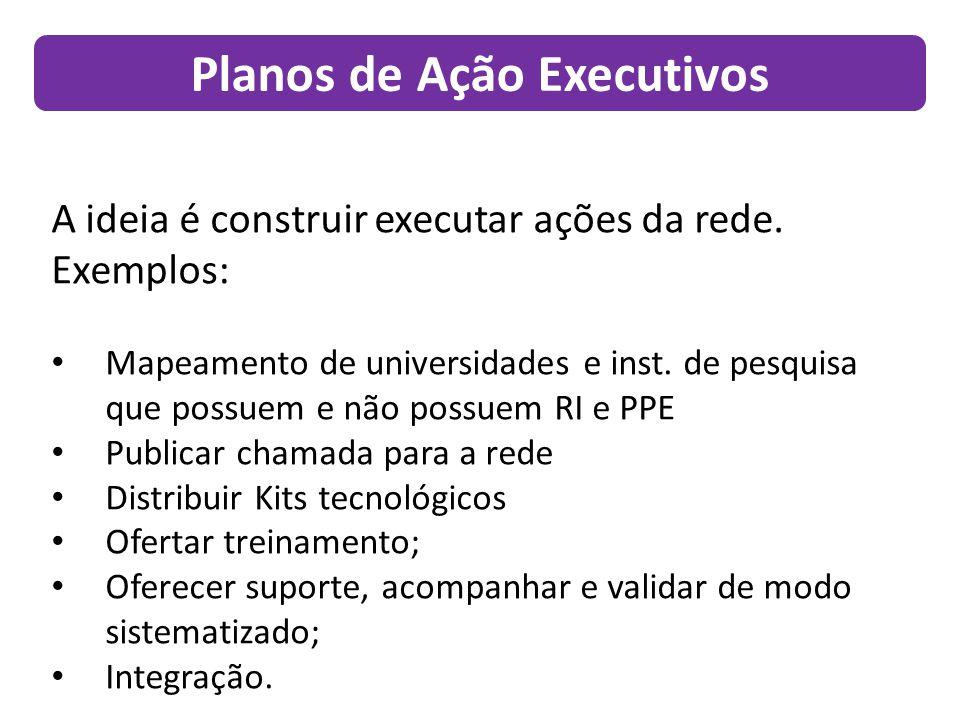 Planos de Ação Executivos A ideia é construir executar ações da rede.