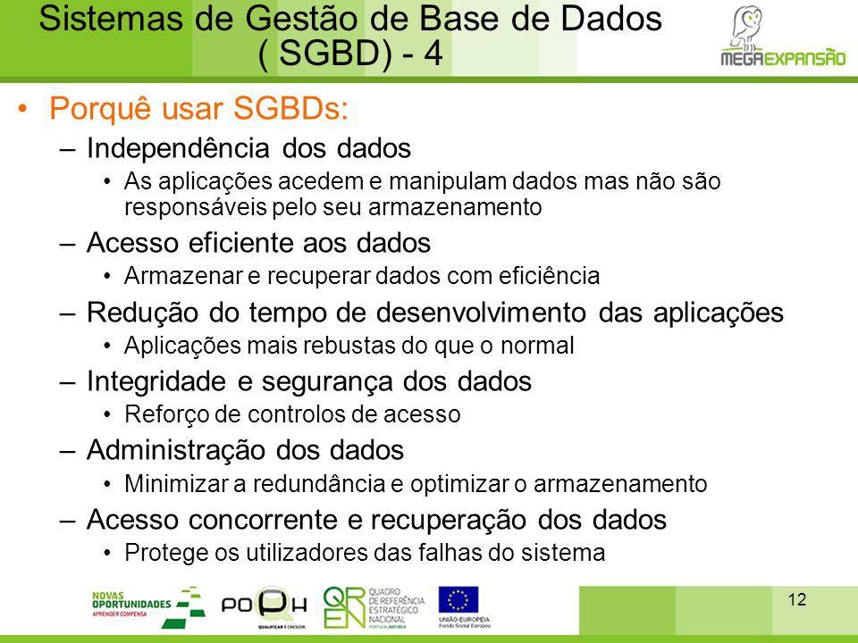 12 Sistemas de Gestão de Base de Dados ( SGBD) - 4 •Porquê usar SGBDs: –Independência dos dados •As aplicações acedem e manipulam dados mas não são re