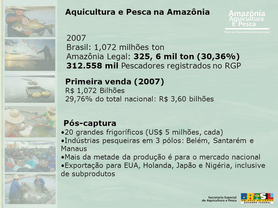 Pós-captura •20 grandes frigoríficos (US$ 5 milhões, cada) •Indústrias pesqueiras em 3 pólos: Belém, Santarém e Manaus •Mais da metade da produção é p