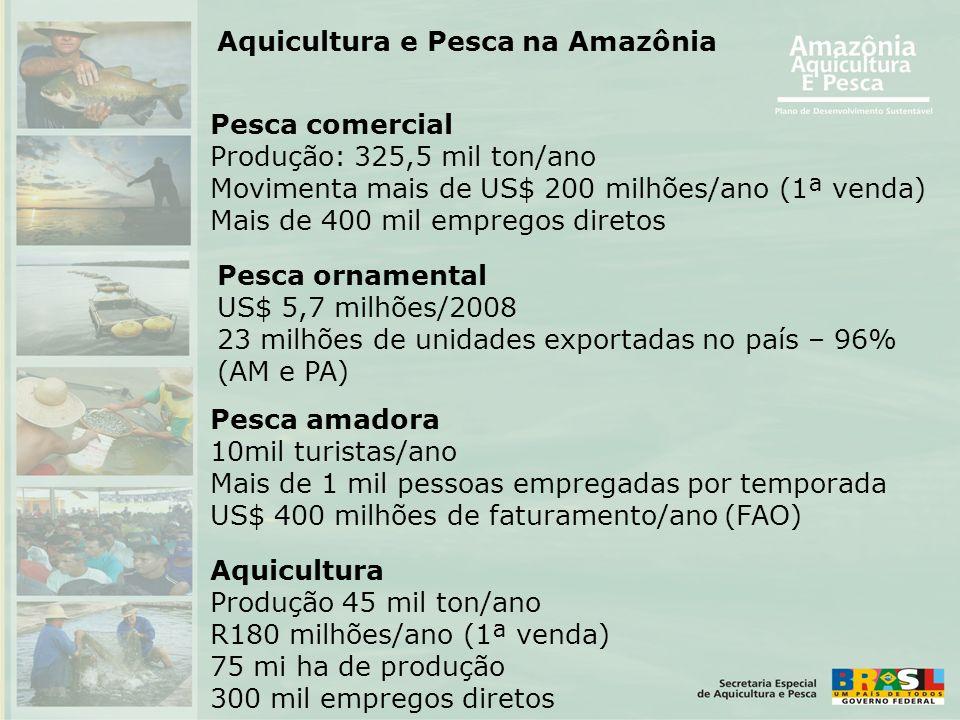 Pesca comercial Produção: 325,5 mil ton/ano Movimenta mais de US$ 200 milhões/ano (1ª venda) Mais de 400 mil empregos diretos Pesca amadora 10mil turi