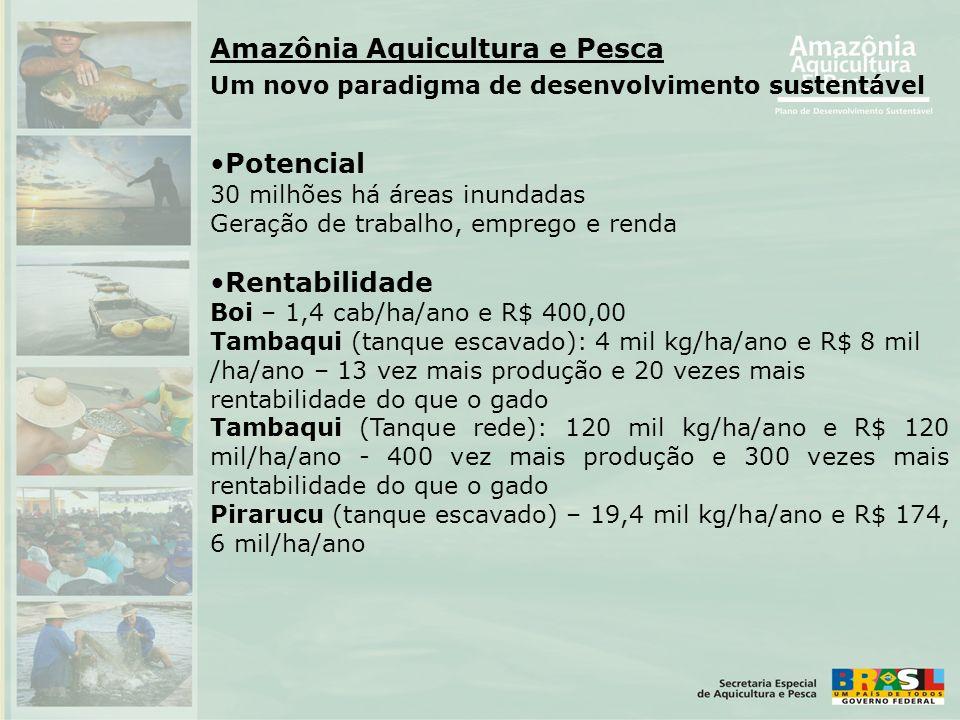 Amazônia Aquicultura e Pesca Um novo paradigma de desenvolvimento sustentável •Potencial 30 milhões há áreas inundadas Geração de trabalho, emprego e