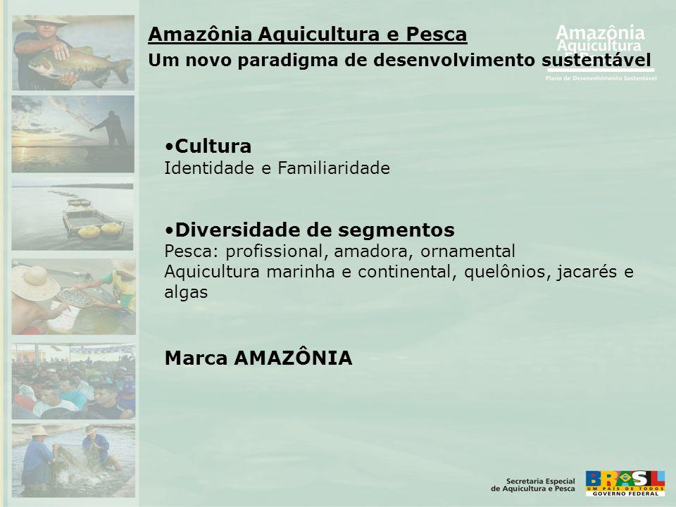 •Cultura Identidade e Familiaridade •Diversidade de segmentos Pesca: profissional, amadora, ornamental Aquicultura marinha e continental, quelônios, j