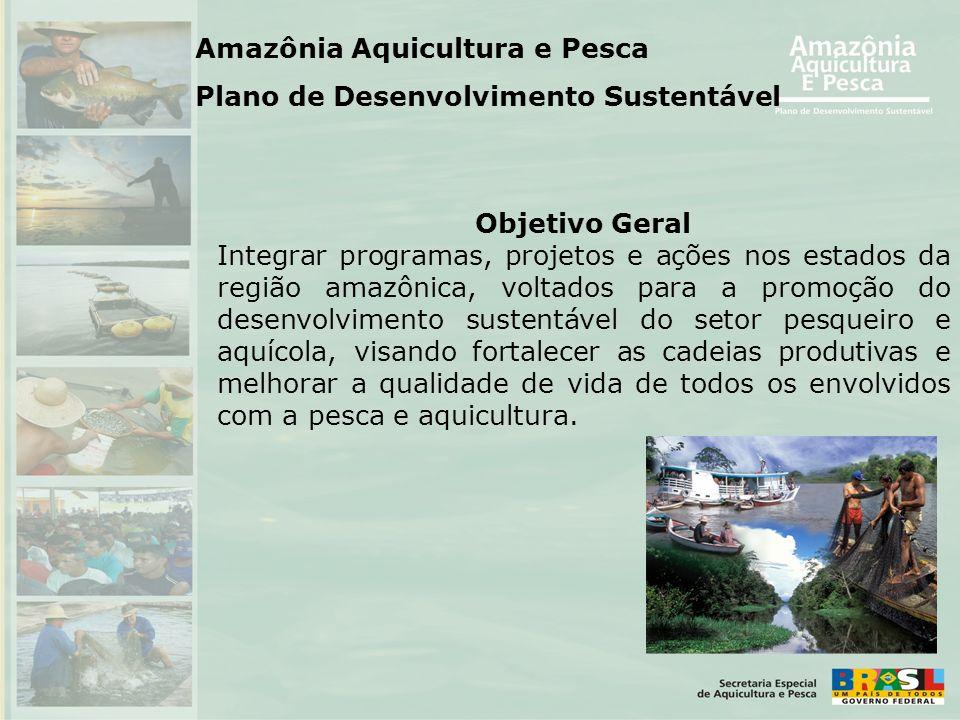 Objetivo Geral Integrar programas, projetos e ações nos estados da região amazônica, voltados para a promoção do desenvolvimento sustentável do setor