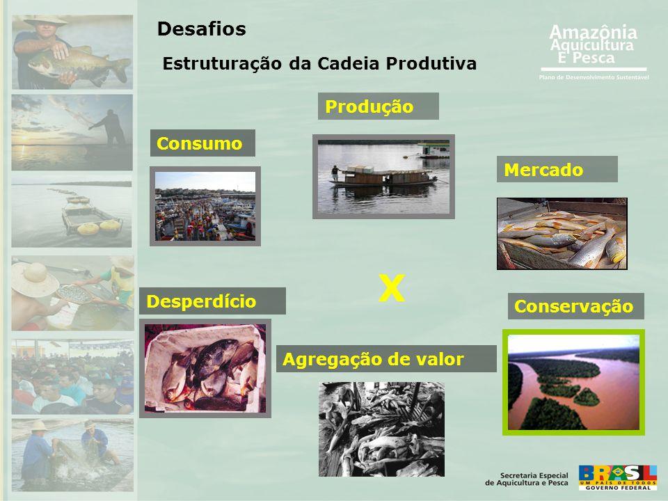 Consumo Produção Desperdício Conservação X Desafios Mercado Agregação de valor Estruturação da Cadeia Produtiva