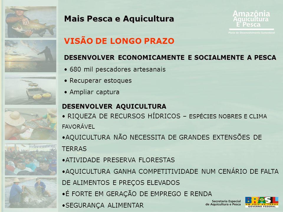 Mais Pesca e Aquicultura VISÃO DE LONGO PRAZO DESENVOLVER ECONOMICAMENTE E SOCIALMENTE A PESCA • 680 mil pescadores artesanais • Recuperar estoques •