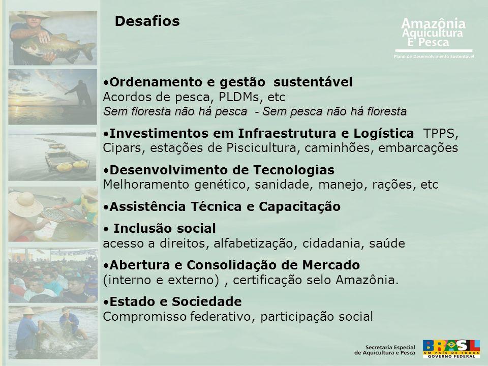 Desafios •Ordenamento e gestão sustentável Acordos de pesca, PLDMs, etc Sem floresta não há pesca - Sem pesca não há floresta •Investimentos em Infrae