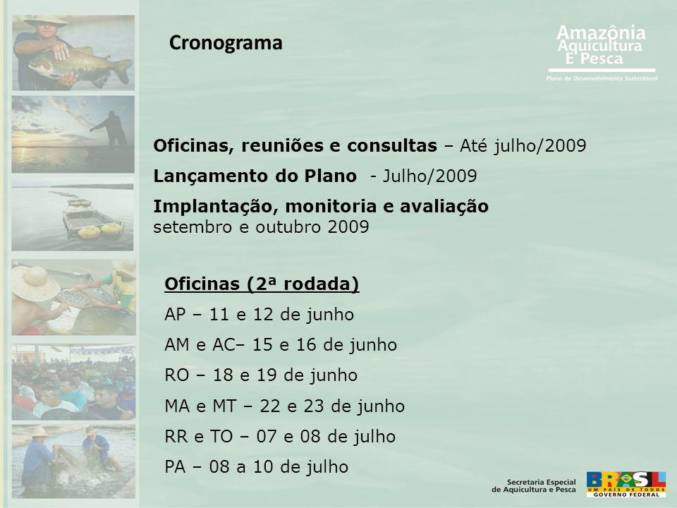 Cronograma Oficinas, reuniões e consultas – Até julho/2009 Lançamento do Plano - Julho/2009 Implantação, monitoria e avaliação setembro e outubro 2009