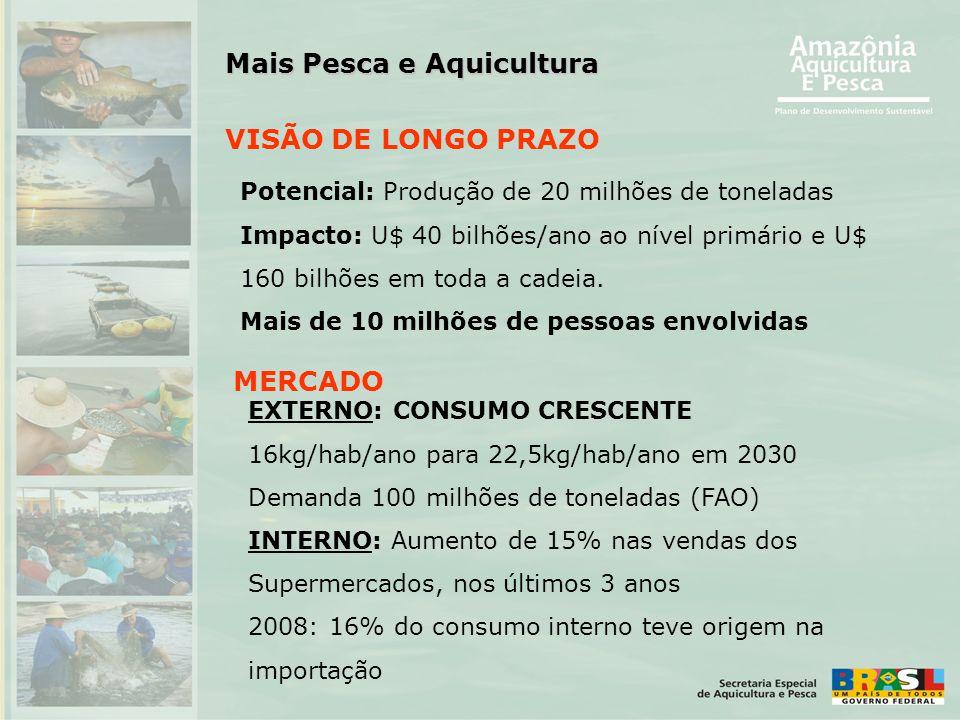 VISÃO DE LONGO PRAZO Potencial: Produção de 20 milhões de toneladas Impacto: U$ 40 bilhões/ano ao nível primário e U$ 160 bilhões em toda a cadeia. Ma
