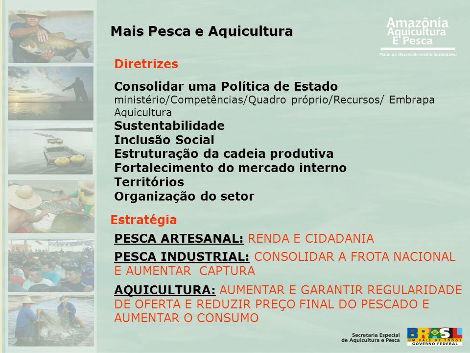Consolidar uma Política de Estado ministério/Competências/Quadro próprio/Recursos/ Embrapa Aquicultura Sustentabilidade Inclusão Social Estruturação d