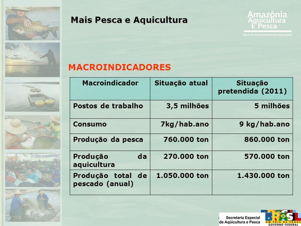 MACROINDICADORES MacroindicadorSituação atualSituação pretendida (2011) Postos de trabalho3,5 milhões5 milhões Consumo7kg/hab.ano9 kg/hab.ano Produção