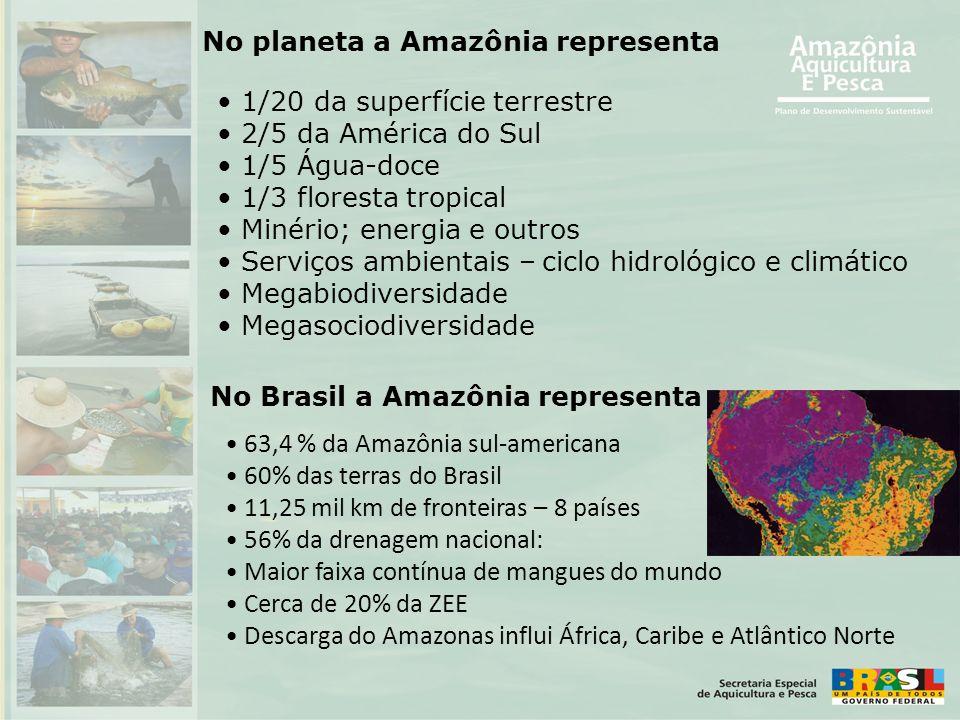 • 1/20 da superfície terrestre • 2/5 da América do Sul • 1/5 Água-doce • 1/3 floresta tropical • Minério; energia e outros • Serviços ambientais – cic