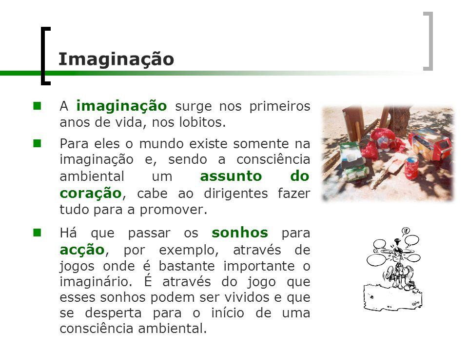 Imaginação  A imaginação surge nos primeiros anos de vida, nos lobitos.  Para eles o mundo existe somente na imaginação e, sendo a consciência ambie
