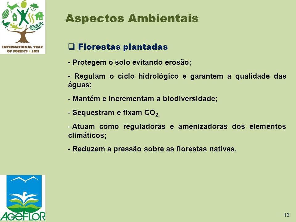  Florestas plantadas - Protegem o solo evitando erosão; - Regulam o ciclo hidrológico e garantem a qualidade das águas; - Mantém e incrementam a biod