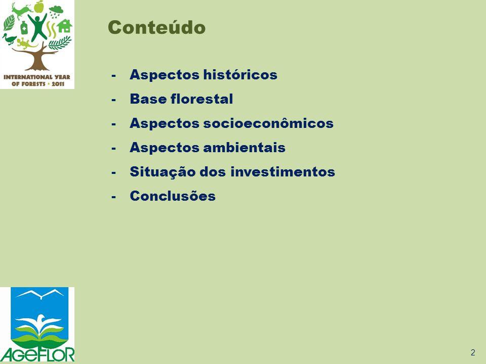  Florestas plantadas - Protegem o solo evitando erosão; - Regulam o ciclo hidrológico e garantem a qualidade das águas; - Mantém e incrementam a biodiversidade; - Sequestram e fixam CO 2; - Atuam como reguladoras e amenizadoras dos elementos climáticos; - Reduzem a pressão sobre as florestas nativas.