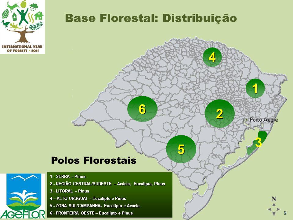 1 3 6 5 1 - SERRA – Pinus 2 - REGIÃO CENTRAL/SUDESTE – Acácia, Eucalipto, Pinus 3 - LITORAL – Pinus 4 – ALTO URUGUAI – Eucalipto e Pinus 5 - ZONA SUL/CAMPANHA- Eucalipto e Acácia 6 - FRONTEIRA OESTE – Eucalipto e Pinus 4 2 Polos Florestais Base Florestal: Distribuição 9