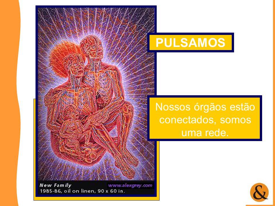 Nossos órgãos estão conectados, somos uma rede. PULSAMOS