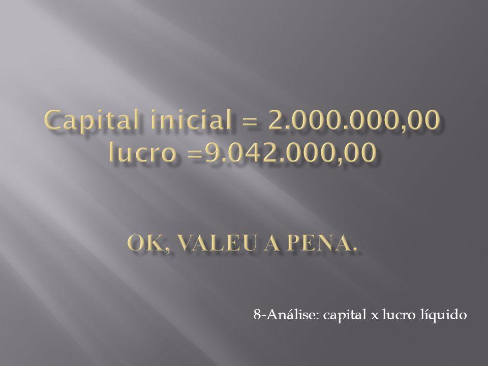 8-Análise: capital x lucro líquido