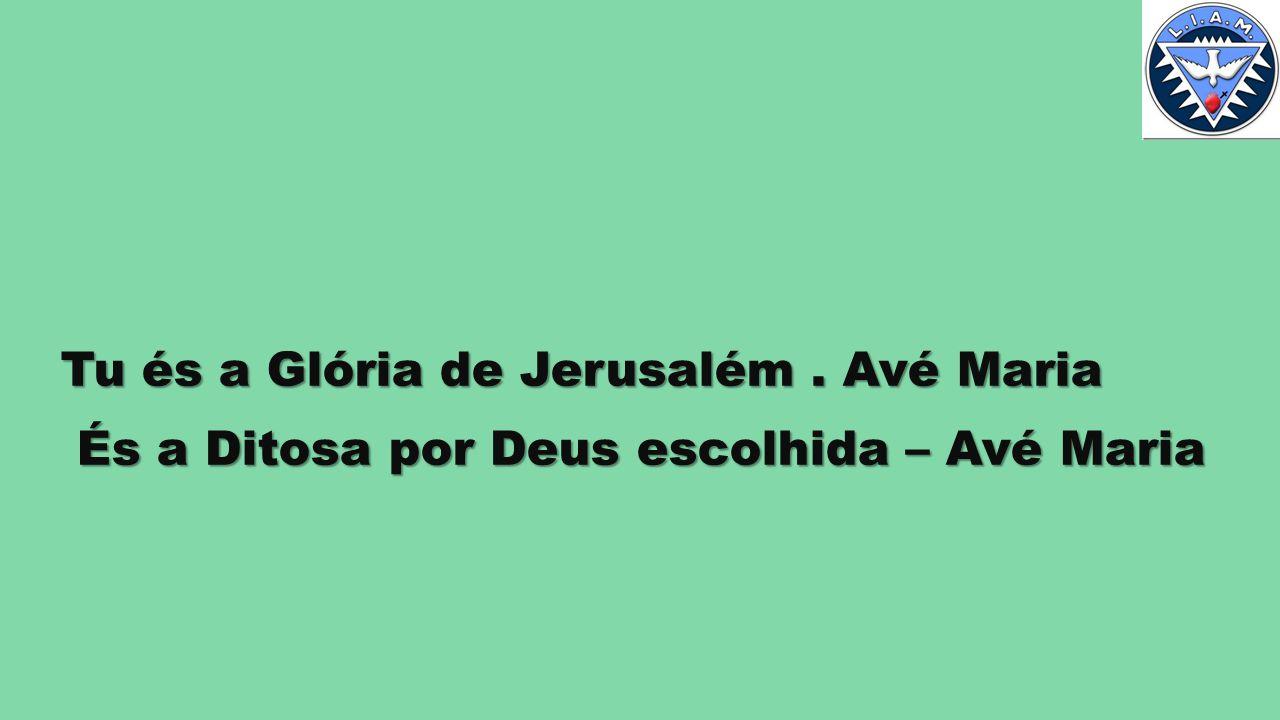 Tu és a Glória de Jerusalém.
