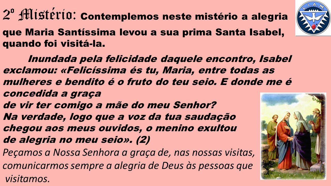 2º Mistério: Contemplemos neste mistério a alegria que Maria Santíssima levou a sua prima Santa Isabel, quando foi visitá-la.