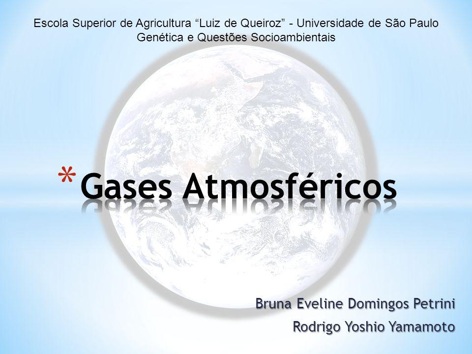 """Bruna Eveline Domingos Petrini Rodrigo Yoshio Yamamoto Escola Superior de Agricultura """"Luiz de Queiroz"""" - Universidade de São Paulo Genética e Questõe"""