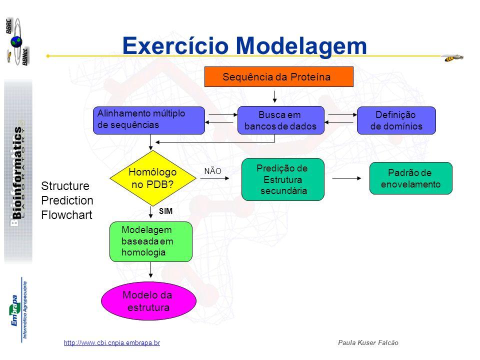 Paula Kuser Falcão http://www.cbi.cnpia.embrapa.br Sequência da Proteína Busca em bancos de dados Definição de domínios Alinhamento múltiplo de sequên