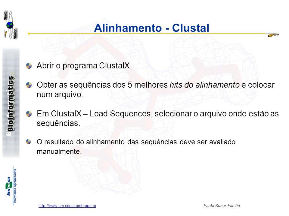 Paula Kuser Falcão http://www.cbi.cnpia.embrapa.br Abrir o programa ClustalX. Obter as sequências dos 5 melhores hits do alinhamento e colocar num arq