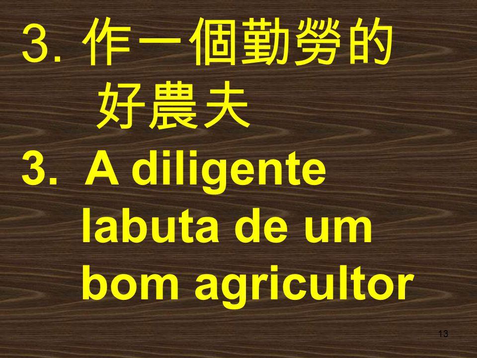 13 3. 作一個勤勞的 好農夫 3. A diligente labuta de um bom agricultor