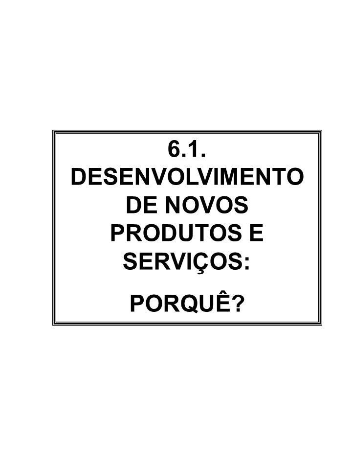 6.1. DESENVOLVIMENTO DE NOVOS PRODUTOS E SERVIÇOS: PORQUÊ?