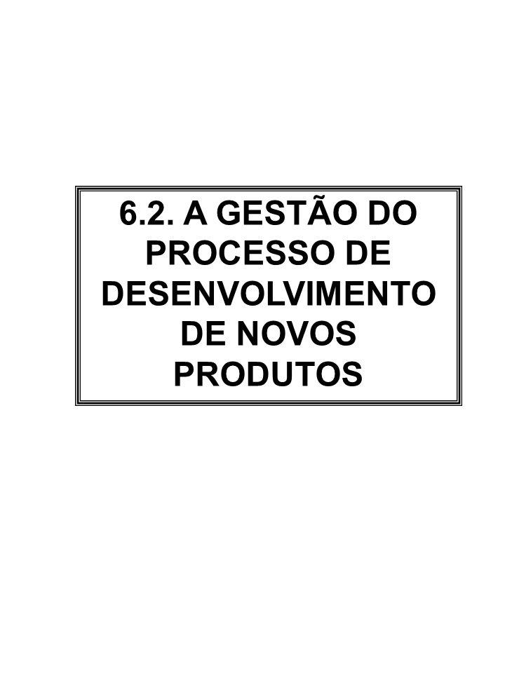 6.2. A GESTÃO DO PROCESSO DE DESENVOLVIMENTO DE NOVOS PRODUTOS