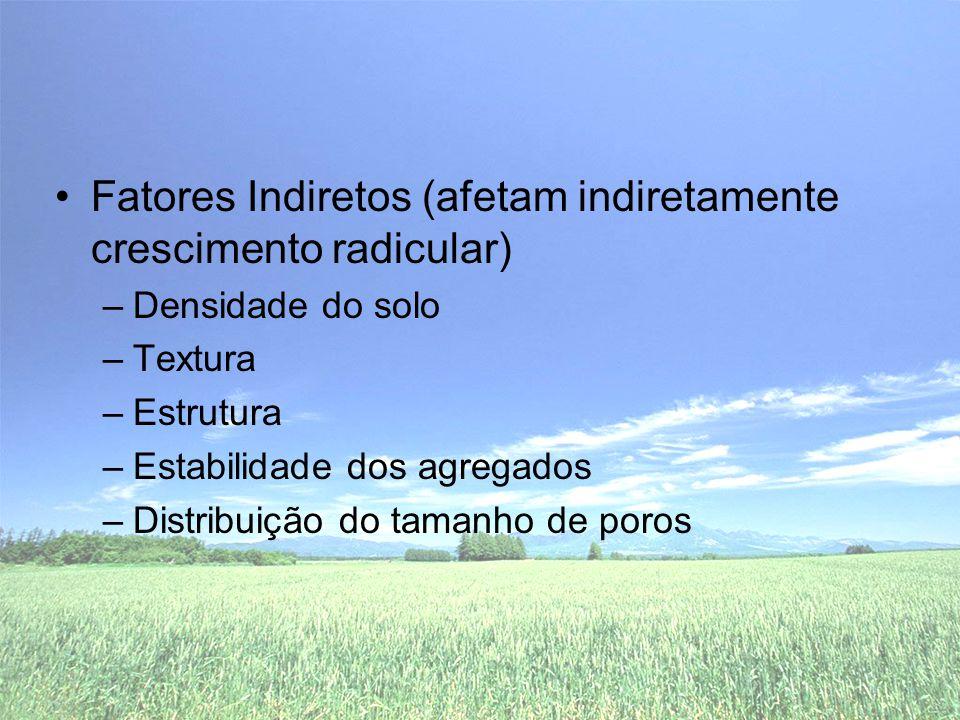 •Fatores Indiretos (afetam indiretamente crescimento radicular) –Densidade do solo –Textura –Estrutura –Estabilidade dos agregados –Distribuição do tamanho de poros
