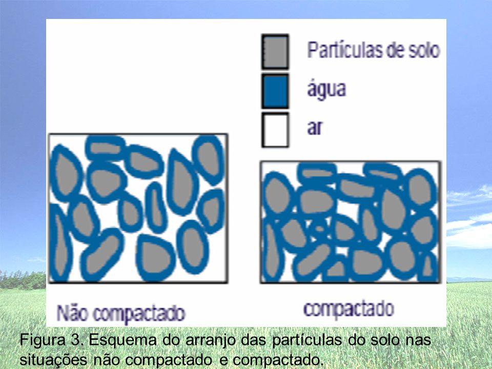 Figura 3. Esquema do arranjo das partículas do solo nas situações não compactado e compactado.