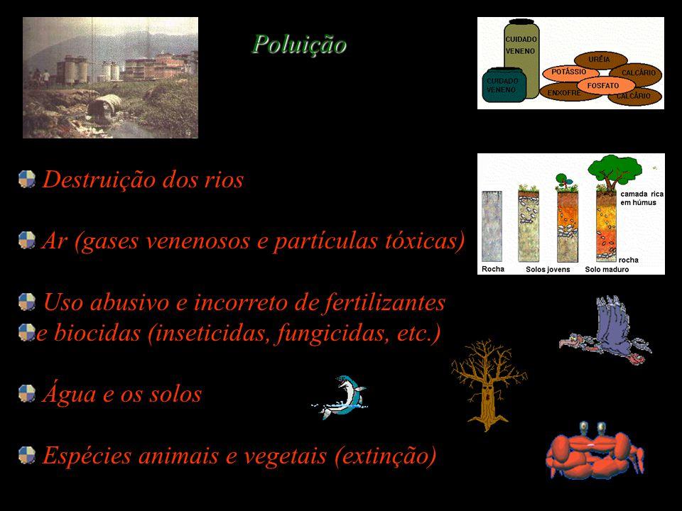 Destruição dos rios Ar (gases venenosos e partículas tóxicas) Uso abusivo e incorreto de fertilizantes e biocidas (inseticidas, fungicidas, etc.) Água e os solos Espécies animais e vegetais (extinção) Poluição