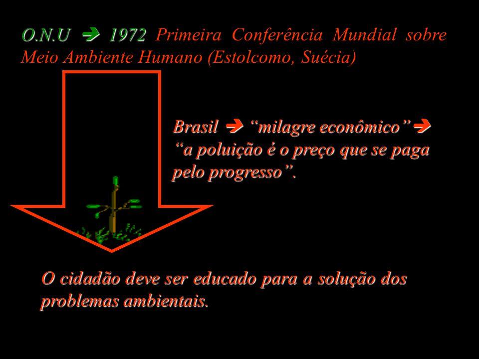 Brasil  milagre econômico  a poluição é o preço que se paga pelo progresso .