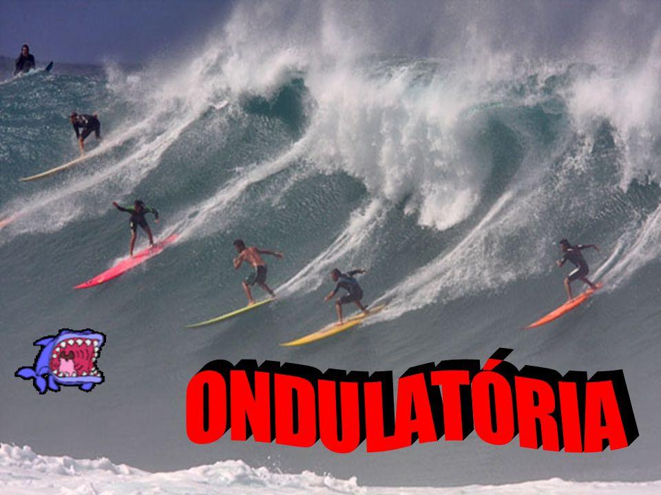 Ondulatória É o estudo das ondas Exemplos: - Som- Luz - Ultrassom- Micro-ondas
