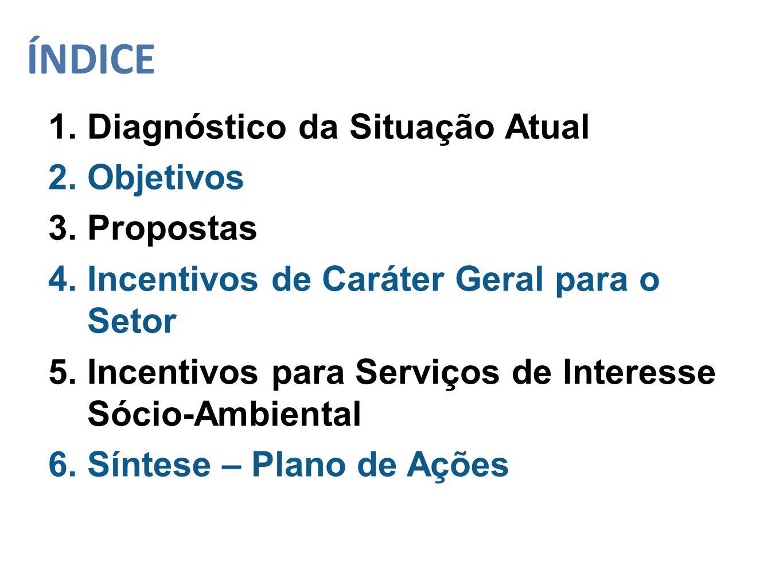 ÍNDICE 1. Diagnóstico da Situação Atual 2. Objetivos 3. Propostas 4. Incentivos de Caráter Geral para o Setor 5. Incentivos para Serviços de Interesse