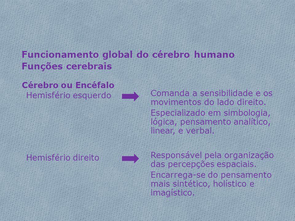 Funcionamento global do cérebro humano Funções cerebrais Cérebro ou Encéfalo Hemisfério esquerdo Comanda a sensibilidade e os movimentos do lado direi