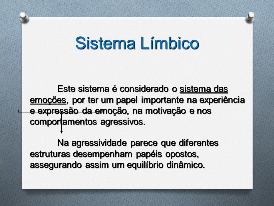 Sistema Límbico Este sistema é considerado o sistema das emoções, por ter um papel importante na experiência e expressão da emoção, na motivação e nos