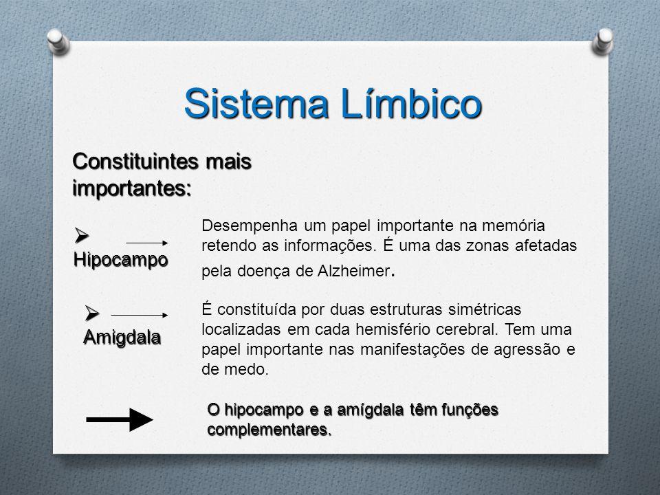 Sistema Límbico Constituintes mais importantes:  Hipocampo  Amigdala É constituída por duas estruturas simétricas localizadas em cada hemisfério cer