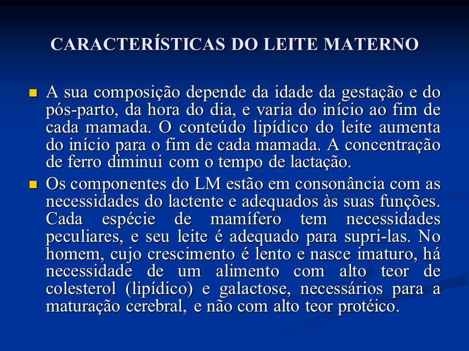 CARACTERÍSTICAS DO LEITE MATERNO  A sua composição depende da idade da gestação e do pós-parto, da hora do dia, e varia do início ao fim de cada mama