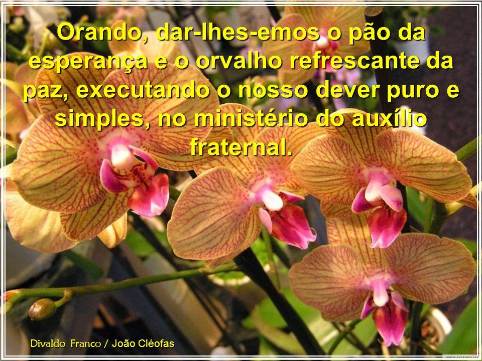 Divaldo Franco / João Cléofas Oremos, e a ardência das paixões não nos conseguirá aniquilar. Orando, ofereceremos oportunidade aos nossos irmãos em tr