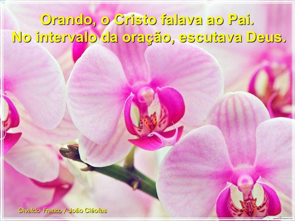 Divaldo Franco / João Cléofas O coração humano, visitado pela sublime luz do Céu, amplia as suas fronteiras de amor e agasalha toda uma multidão de af