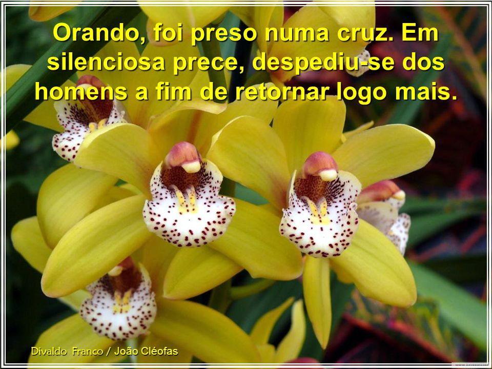 Divaldo Franco / João Cléofas Orando, o Cristo falava ao Pai. No intervalo da oração, escutava Deus. No intervalo da oração, escutava Deus.
