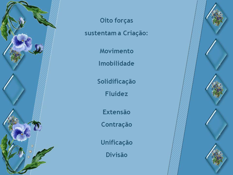 Oito forças sustentam a Criação: Movimento Imobilidade Solidificação Fluidez Extensão Contração Unificação Divisão