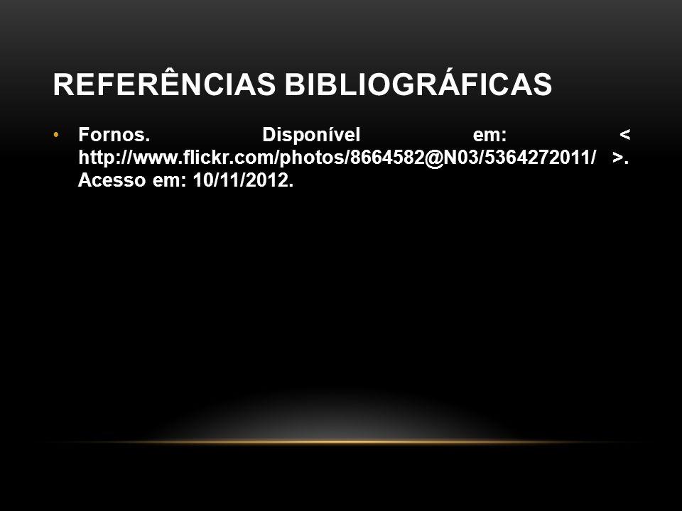 REFERÊNCIAS BIBLIOGRÁFICAS •Fornos. Disponível em:. Acesso em: 10/11/2012.