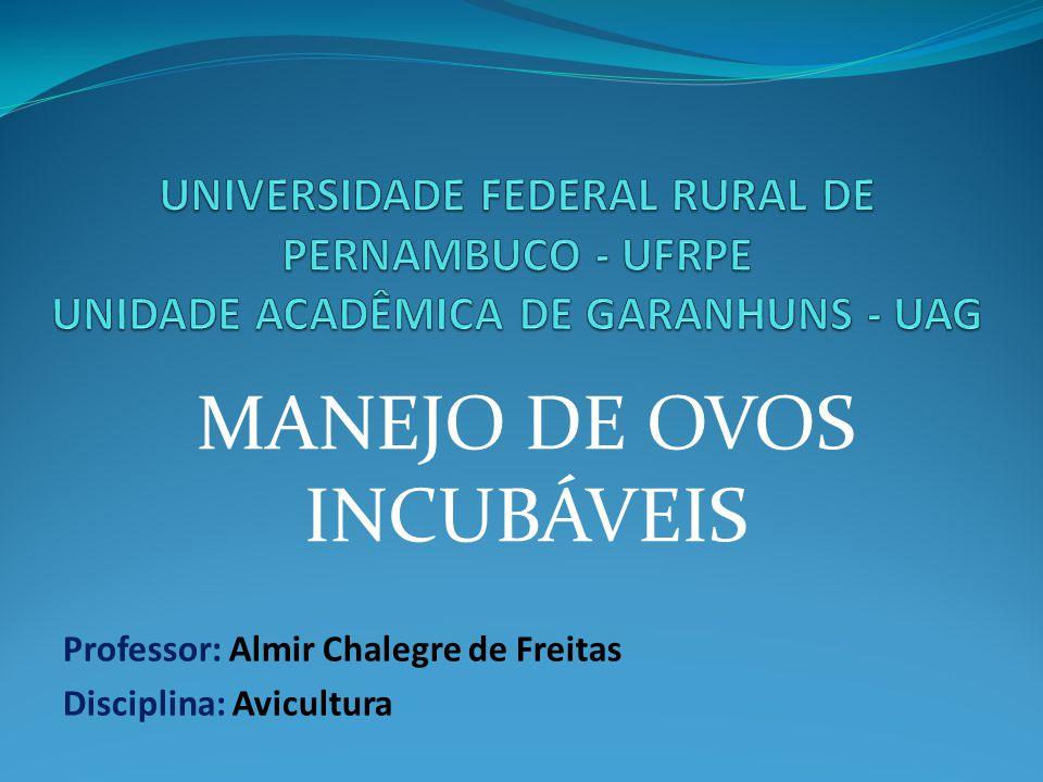Professor: Almir Chalegre de Freitas Disciplina: Avicultura MANEJO DE OVOS INCUBÁVEIS