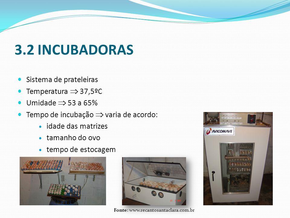 3.2 INCUBADORAS  Sistema de prateleiras  Temperatura  37,5ºC  Umidade  53 a 65%  Tempo de incubação  varia de acordo:  idade das matrizes  tamanho do ovo  tempo de estocagem Fonte: www.recantosantaclara.com.br