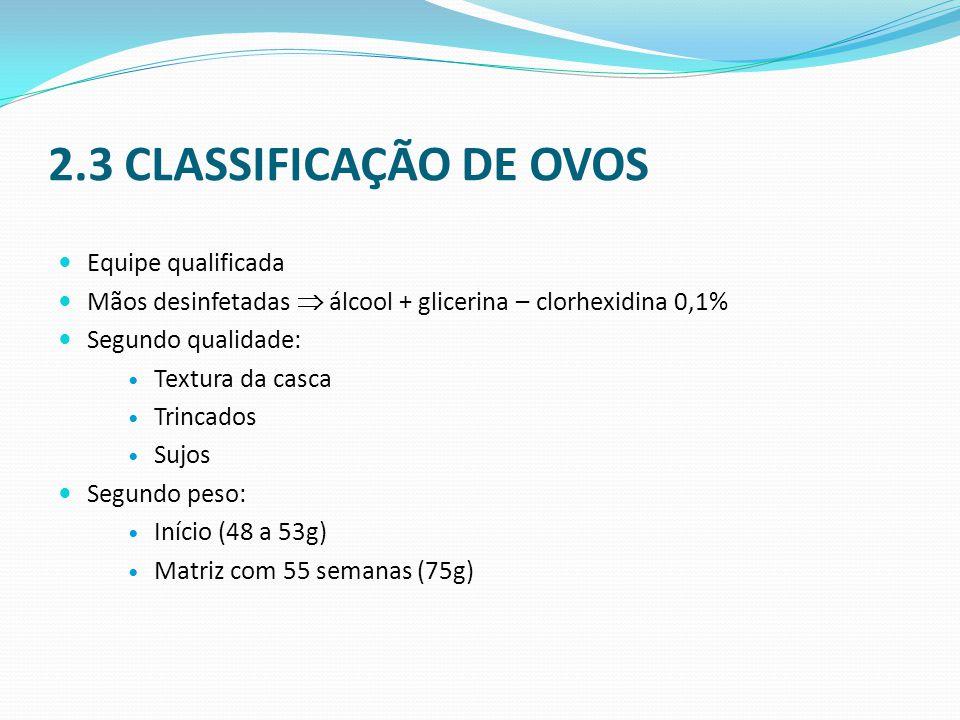 2.3 CLASSIFICAÇÃO DE OVOS  Equipe qualificada  Mãos desinfetadas  álcool + glicerina – clorhexidina 0,1%  Segundo qualidade:  Textura da casca  Trincados  Sujos  Segundo peso:  Início (48 a 53g)  Matriz com 55 semanas (75g)