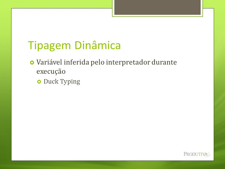 Tipagem Dinâmica  Variável inferida pelo interpretador durante execução  Duck Typing