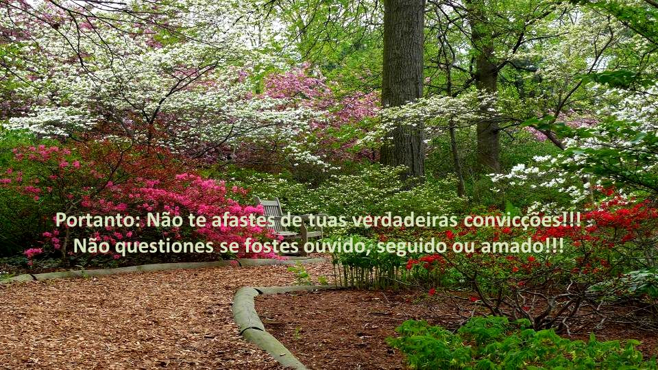 Portanto: Não te afastes de tuas verdadeiras convicções!!.