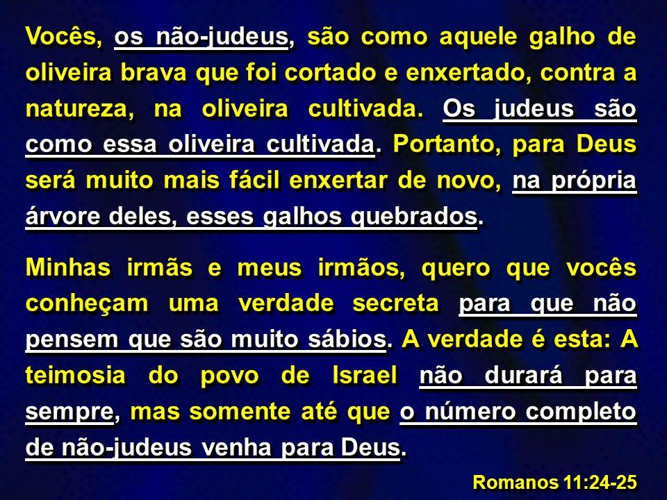 Se Deus não deixou de castigar os judeus, que são como galhos naturais, vocês acham que ele vai deixar de castigar vocês? Vejam como Deus é bom e tamb